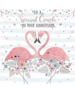 To a Special Couple on your Anniversary Card