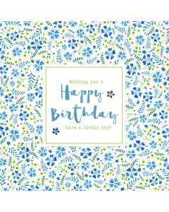 Wishing you a Happy Birthday, have a lovely day card
