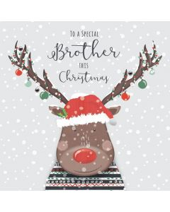 To a Special Brother this Christmas Card