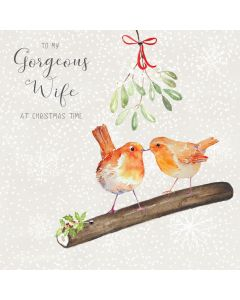 To my Gorgeous Wife at Christmas time