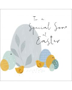 To a special Son at Easter