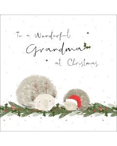 To a wonderful Grandma at Christmas
