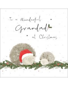 To a wonderful Grandad at Christmas