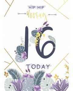 Hip Hip Hooray, 16 Today